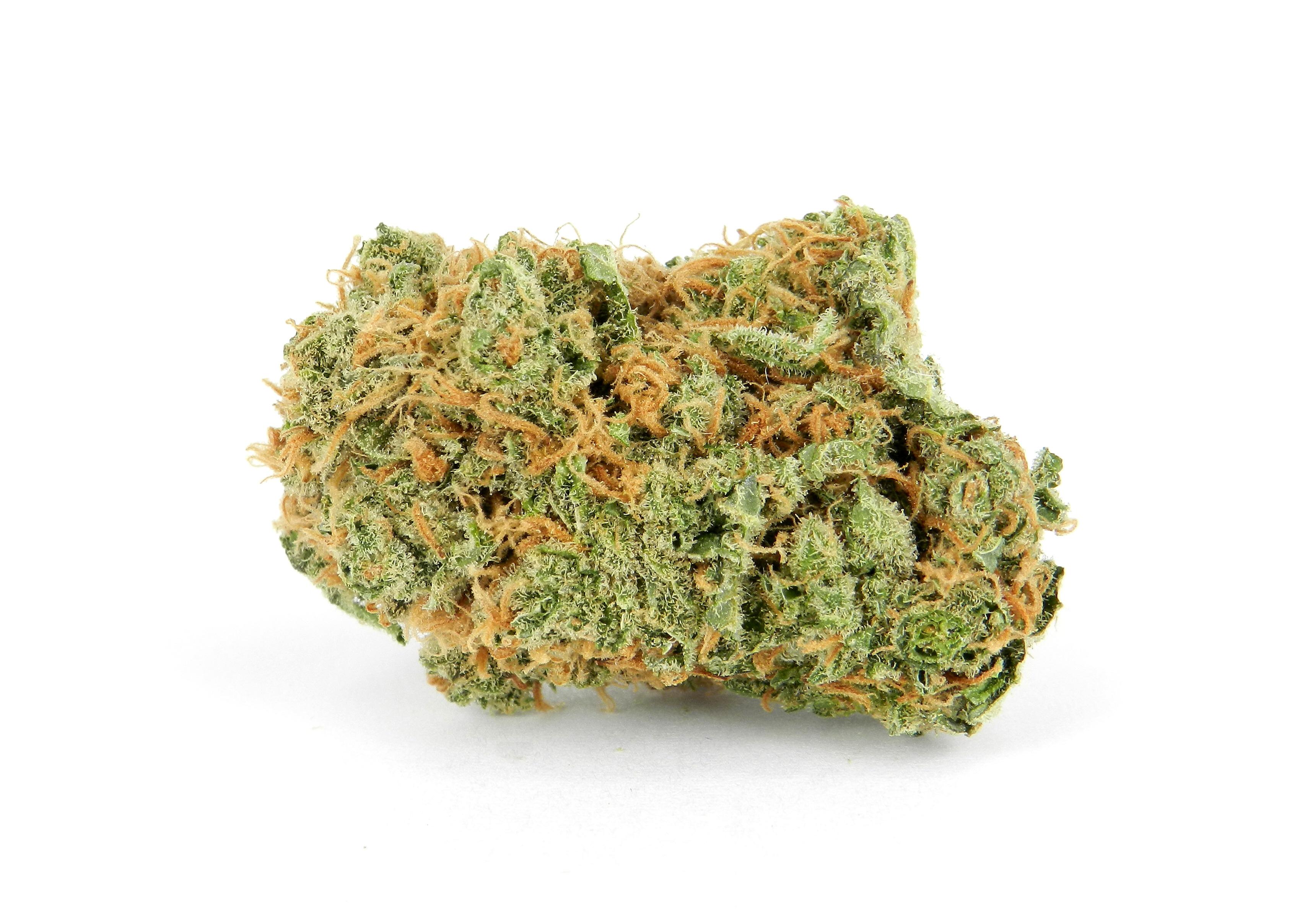 Tropicana Strain Review | Swami's Medical Marijuana Dispensary