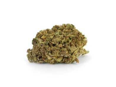 cat piss strain review